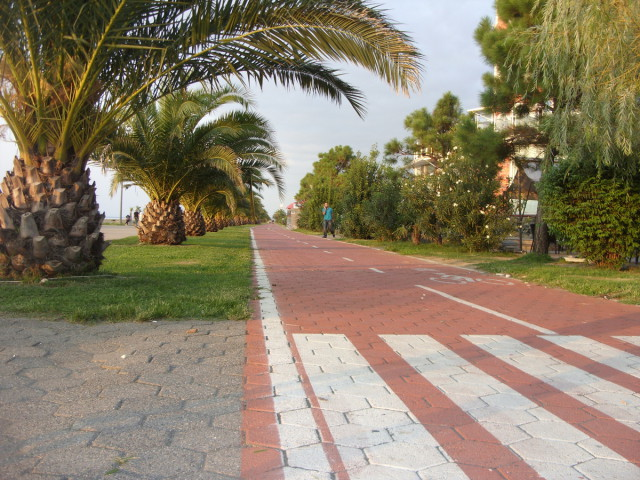 Приморский парк в Батуми.