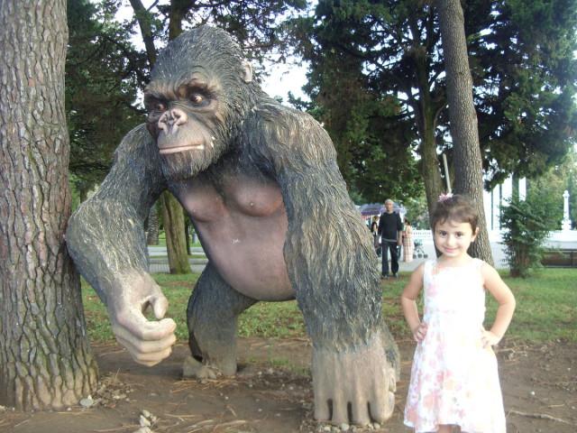 Деревянный обезьян, Батумский приморский парк